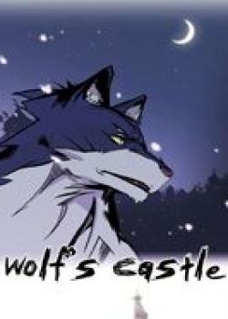 Wolf's castle cover